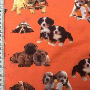 Jersey print med søde hunde (orange)