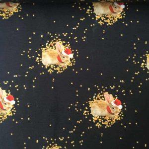 Jersey print med nytårskaniner