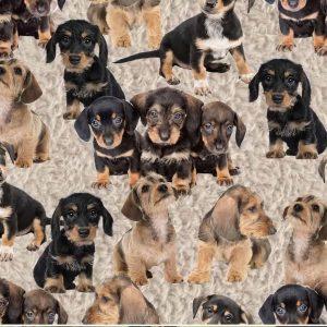 Jersey print med langhårede gravhunden 2