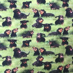 Jersey print med langhårede gravhunde