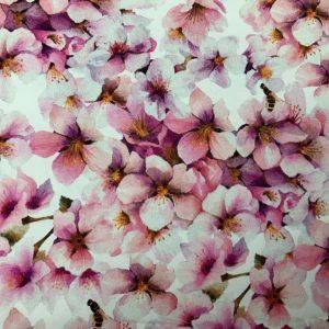Japaness blossom